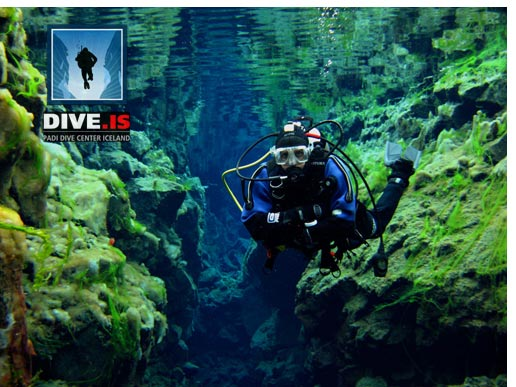 Learn dry suit diving
